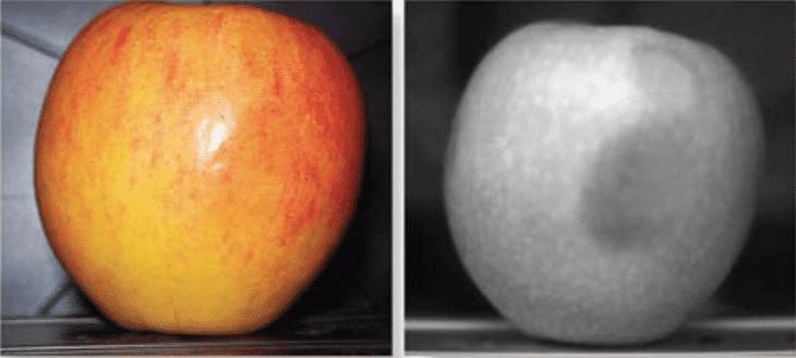 análisis hiperespectral manzana