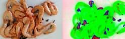 Inspección química de alimentos